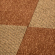 Carpet design — Stockfoto #9335717