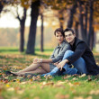 Stock Photo: Couple in park
