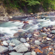 Stock Photo: Panoramic view of Sochi river