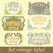 Set of vintage style — Stock Vector