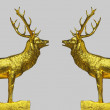 Golden pair of the red deer — Stock Photo