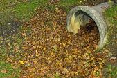 Jesienne liście przed rury — Zdjęcie stockowe