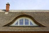 Schilfdach, Reetdach, Fenster — Stock Photo