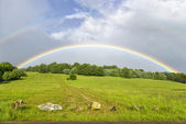 Rainbow over hilly grassland — Stock Photo