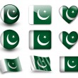The Pakistani flag — Stockfoto