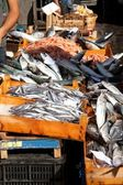 Fishes, Fish market, Catania — Stock Photo