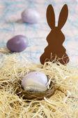 Kleines Osternest mit Ostereiern — Stockfoto