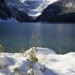 Stock Photo: Lake Louise Winter Wonderland