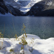 Lake Louise Winter Wonderland — Stock Photo #8159680