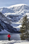Lake Louise Winter Wonderland — Stok fotoğraf