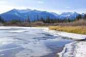 Bow River in Banff — Stock Photo