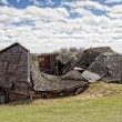 Stock Photo: Natures Toll on Barn