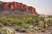 пустыня mountians — Стоковое фото