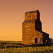 Old Grain Elevator — Stock Photo