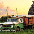 Stock Photo: Old Green Grain Truck