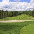Stock Photo: Golf Course Fairway