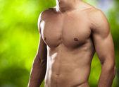 Perfect torso — Stock Photo