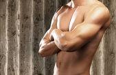Strong torso — Stock Photo