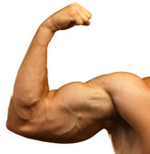 Strong biceps — Stock Photo