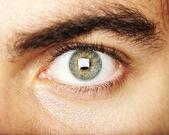 Green eye closeup — Stock fotografie