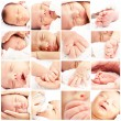 Group of baby - Stock Photo