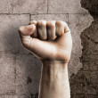 Punch fist — Stock Photo