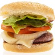 Complete burger — Stock Photo