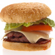 Complete burger — Stockfoto