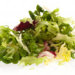 Lettuce — Stock Photo #10189754