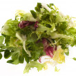 Lettuce — Stock Photo #10189771
