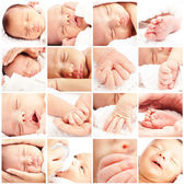 Group of baby — Stock Photo