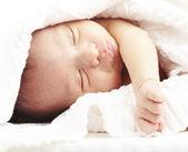 Newborn sleeping — Stock Photo