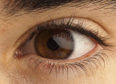 Brown eye — Stock Photo
