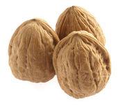 Walnut — Foto Stock