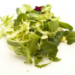 Fresh lettuce — Stock Photo #10193963