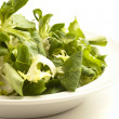 Lettuce on dish — Stock Photo