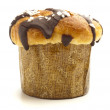Chocolate muffin - Stock Photo