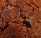 Muffin au chocolat — Photo