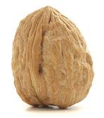 Wallnut — Stock Photo