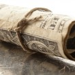 Rolled dollar — Stock Photo