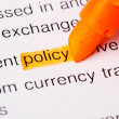 Stock Photo: Policy word