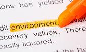 Palabra de medio ambiente — Foto de Stock