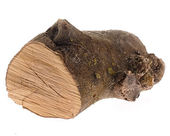 Big log — Stock Photo