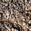 Gravel — Stock Photo #10427035