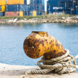Port mooring — Stock Photo #10561388