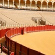 Plaza de Toros in Seville - Stock Photo