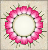 Tulip circle — Stock Photo