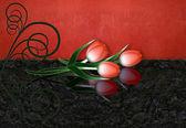 Rode tulpen met reflectie en swirl — Stockfoto