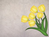 Yellow grunge tulip on textured background — Stock Photo