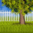 Stock Photo: Green summergarden with fence and tree